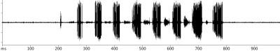 Euthystira brachyptera