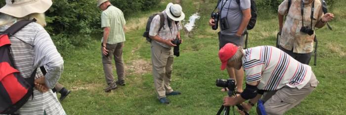 Natur- und Fotoreise zu den Heuschrecken Bulgariens 2018