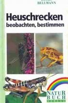 Heuschrecken beobachten - bestimmen