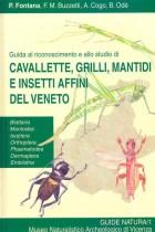 Guida al riconoscimento e allo studio di cavalette, grilli, mantidi e insetti affini del Veneto