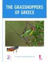 Grasshoppers-Greece_book_2018_01.jpg