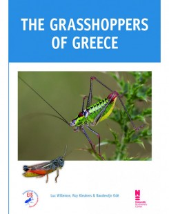 The grasshoppers of Greece