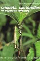 Criquets, sauterelles et espèces voisines