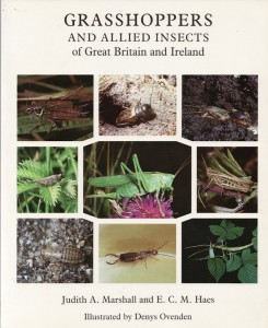 Grasshoppers and Allied Insects of Great Britain and Ireland