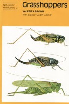 Grasshoppers (Naturalists' Handbook)