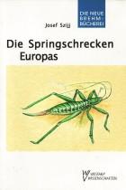 Die Springschrecken Europas